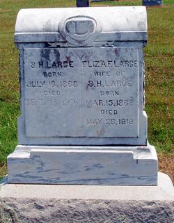 Eliza Jane Frances <I>Wood</I> Large