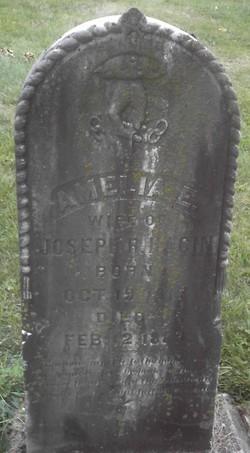 Amelia E. Hagin