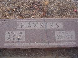 James Guinn Hawkins