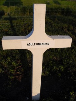 Adult Unknown