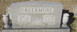 Annie Mae <I>Wilkins</I> Creekmore