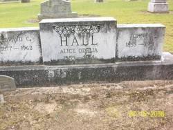Alice Odelia Hail