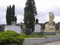 Friedhof Tullnerbach