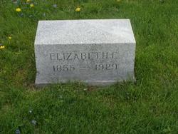 Elizabeth E Wren