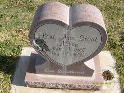 Lori Ann <I>Stout</I> Allen