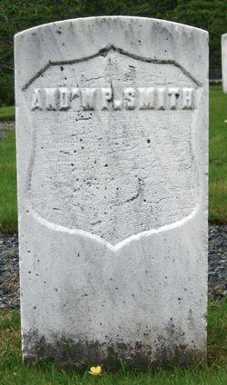 Andrew P Smith