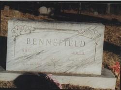 William Henry Bailey Bennefield