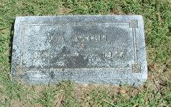 Ava Carson <I>Bancroft</I> Donnell Axtell
