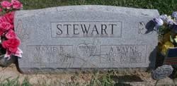 A. Wayne Stewart
