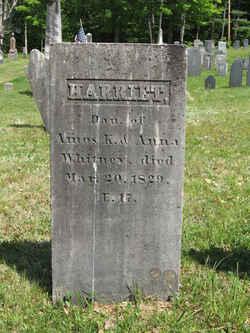 Harriet Whitney