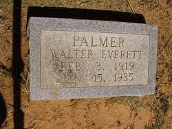 Walter Everett Palmer