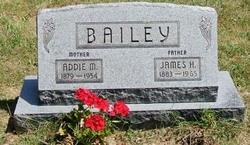 Rev James Harvey Bailey