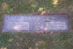 Anthony Mathew Savage