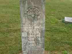 Mary Jane <I>Butler</I> Raper