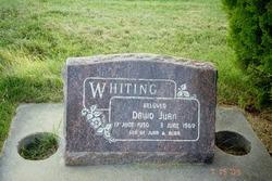 David Juan Whiting