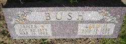 James William Bush