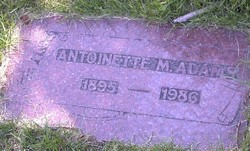 Antoinette M Adams
