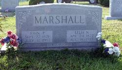 John Pattison Marshall