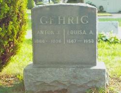 Anton J Gehrig