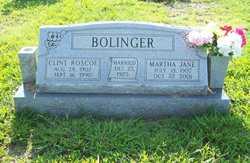 Martha Jane <I>Fowler</I> Bolinger