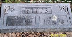Mary Ann <I>Miller</I> Pitts