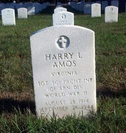 SGT Harry L Amos