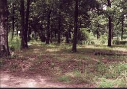 Holleyman Cemetery