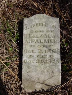 Louis C. Palmer