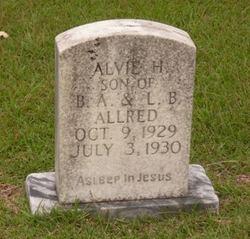 Alvie H Allred