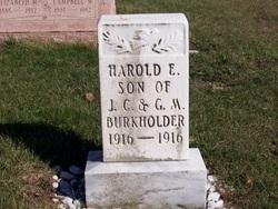 Harold E Burkholder