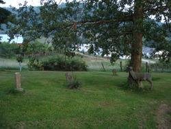 Johnson-Treadway Cemetery