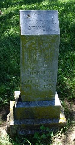 Charley Atwell