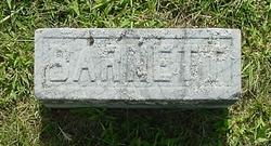 Barnett J. Harriman