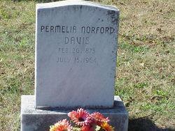 "Permelia Whiteler ""Melie"" <I>Norford</I> Davis"