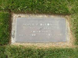 Jasper F Dekoning