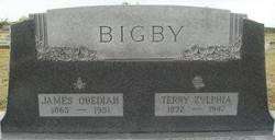 Terry Z <I>Laxson</I> Bigby