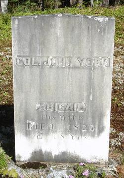 Col John York