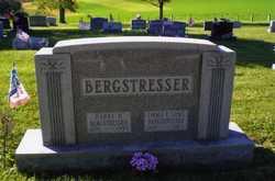 Harry Hamilton Bergstresser