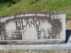 James Aaron Eiland