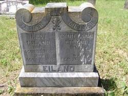 Levi Daniel Eiland, Jr