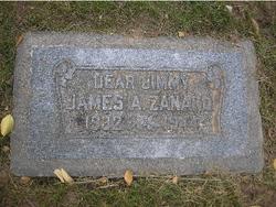 James Anthony Zanardi