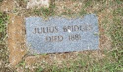 Julius Bridges