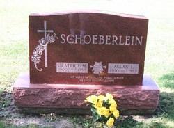 Allan L Schoeberlein