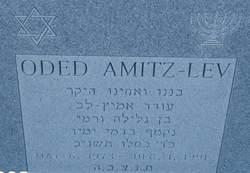 Oded Amitz-Lev