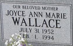 Joyce Ann Wallace