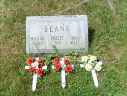 Infant Beane