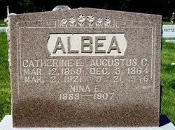 Catherine Elizabeth <I>Eckhardt</I> Albea