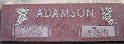 David L Adamson