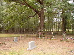 Strong Cemetery African American