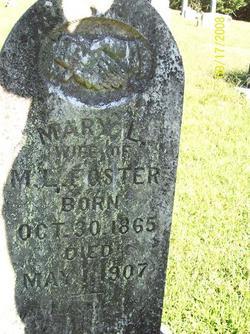 Mary L <I>Nipps</I> Foster